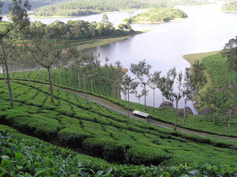 Tour Package - Kerala Tour Package - Hill station & Backwater Holidays