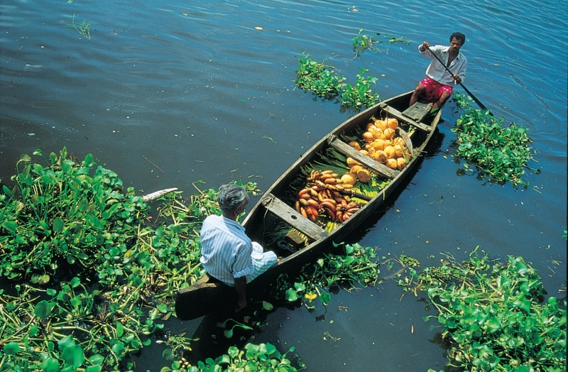 Tour Package - KERALA BACKWATER WITH BEACH TOUR