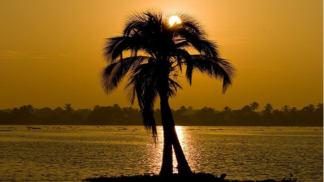 #1. Sail down the Alleppey Backwaters at Sunset