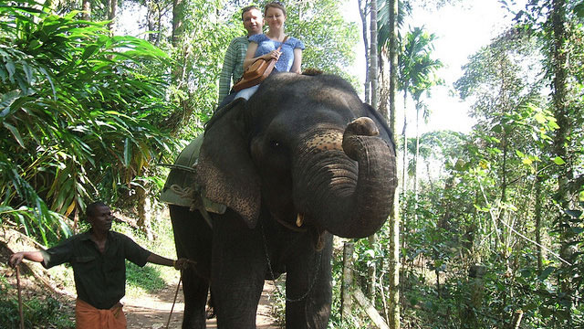 #5. Take an Elephant Ride