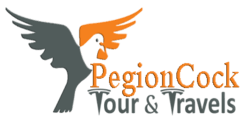 PegionCockTravels