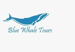 Blue Whale Tours (A Unit Of ITCHA Group)