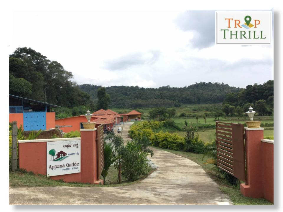Tour Package to Coorg
