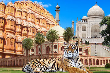 Golden Triangle Tour with TIGER SAFARI: 07 nights/08 days
