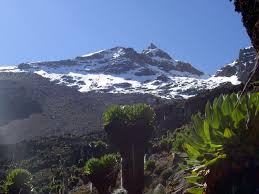 5 Days KENYA SAFARIS  - Mount Kenya Climbing